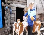 У тех, кто давно мечтал заняться сельским хозяйством, появилась возможность получить на эти цели поддержку от государства